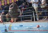 Festejo de 10 para El Delfín en su Torneo de Campeones_29