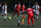 Juventus cayó ante Toluca_7