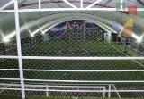 Liga Palapa estrenará instalaciones de Fut 6 Tuxtla_10