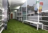 Liga Palapa estrenará instalaciones de Fut 6 Tuxtla_5