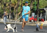 "Participación récord en la 3ª edición ""Corre con tu Mascota""_10"