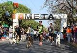 "Participación récord en la 3ª edición ""Corre con tu Mascota""_1"