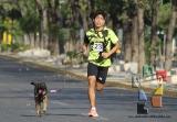 "Participación récord en la 3ª edición ""Corre con tu Mascota""_3"