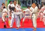 Selección de Karate buscará plazas a la Olimpiada y el Nacional Juvenil 2019_4