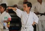 Temokan evalúa a los más pequeños_5